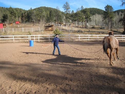 A HEALING HORSE
